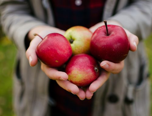 The Surprising Health Benefits of Your Favorite Fall Foods