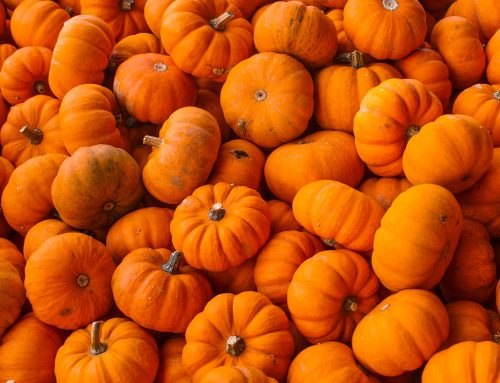 Pump Up the Pumpkin: 5 Reasons to Add This Super Fruit to Your Fall Diet